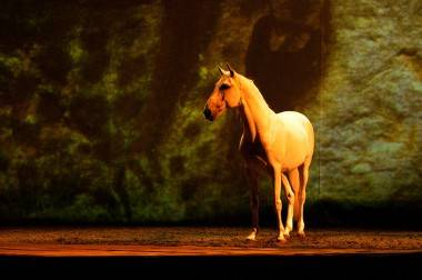Cavalia, Vancouver, March 21, 2011. Ashley Tanasiychuk photo