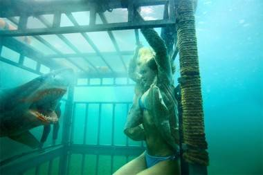 Sara Paxton in Shark Night 3D image