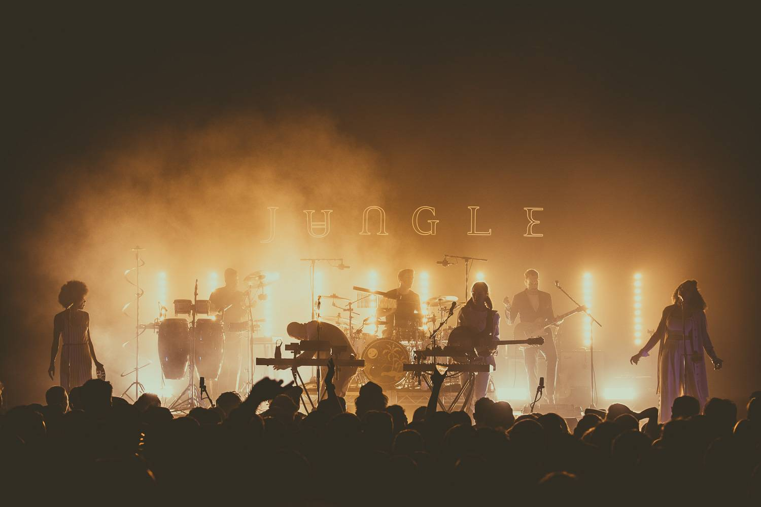 Jungle at the Vogue, Vancouver, April 3 2018. Pavel Boiko photo.