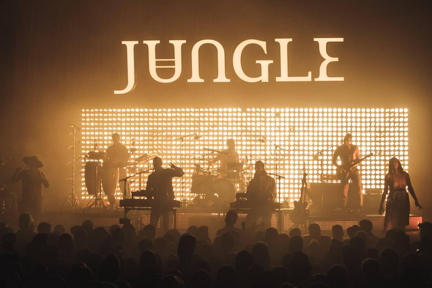 Jungle at the Vogue Theater, Vancouver, March 9, 2019. Pavel Boiko photo.