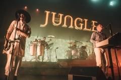 Jungle-15