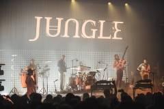 Jungle-21