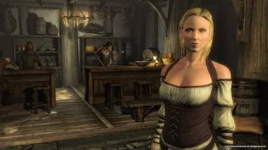 busty wench from The Elder Scrolls V: Skyrim image