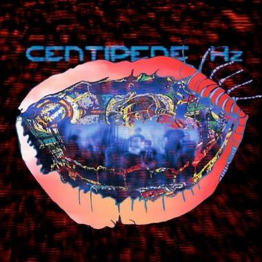 Animal Collective Centipede Hz album cover image