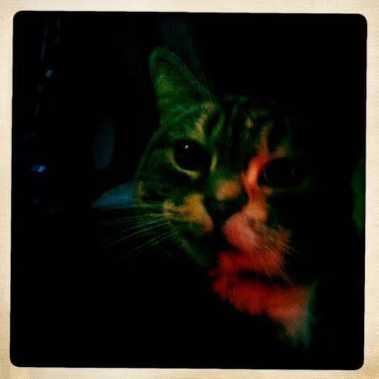 catlow 2
