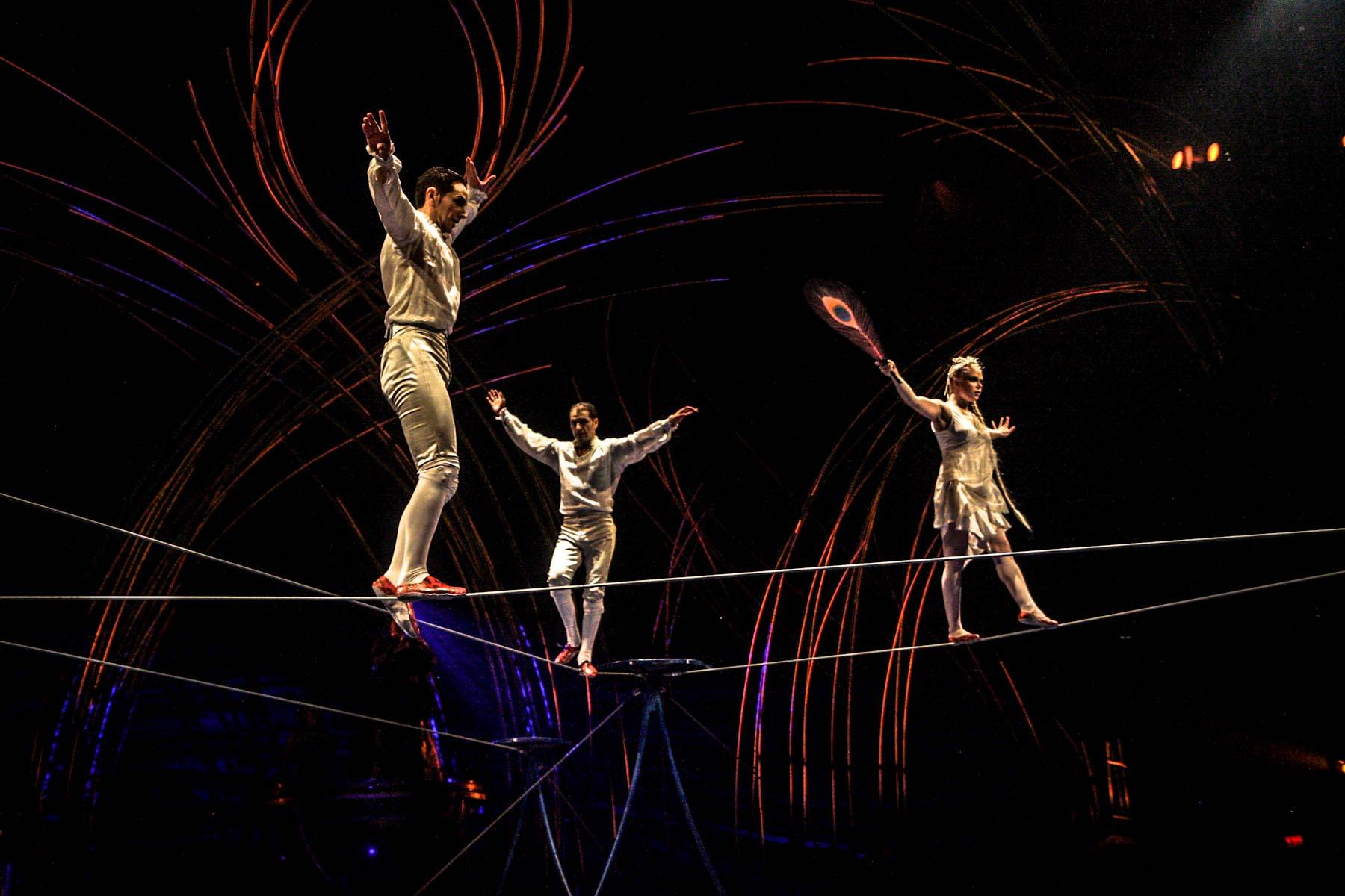 internal analysis cirque du soleil 1048 group cirque du soleil search this projections and competitive analysis work comes under threat from increased competition or internal.