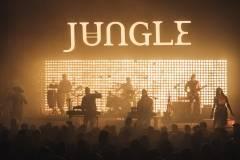 Jungle-17