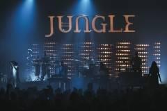 Jungle-18